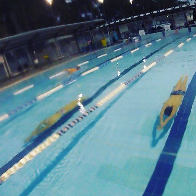 Neilson Swim SchoolさんはInstagramを利用しています:「Working hard on the 5th Stroke. Underwater fly kick critical to fast swimming!!! Every wall is an opportunity to work on your streamlines.…」 (41692)