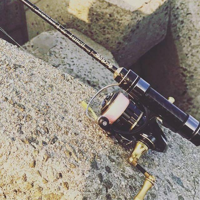 """Lill Maui on Instagram: """"OH行ってらっしゃーい!#daiwa #アジング #釣り好きな人と繋がりたい #17セオリー1003 #釣り"""" (66653)"""