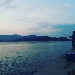 "H・N on Instagram: ""ブログ更新しました‼️ #シーバスロッド #フォール #ショアジギング #根魚 #エヌワン #遊び方 #流用 #有利 #厳選 #オフショア https://ameblo.jp/hiroyuki061119/entry-12383171019.html…"" (71135)"