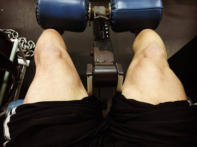 "t@ku0420 on Instagram: ""大腿四頭筋。右の方が調子いい(笑)#トレーニング#足トレ#レッグエクステンション#レッグプレス#大腿四頭筋#パンパン#マッスル#マッチョ#減量中#体重管理 #停滞中"" (74440)"