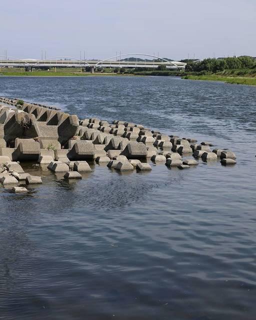 """加野 元明 on Instagram: """"多摩川 多摩川原橋 Tama river#多摩川 #多摩川原橋 #tamagawa #tamariver"""" (77228)"""