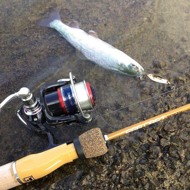 """Garam Masala on Instagram: """"寒くなってきたのでニジマス釣りに挑戦! 釣具店でジャッカルのエッグキャストソフティー見つけてセールで安く買えたので早速使ってみました!スプーン巻き巻きしてたら2匹ほど釣れました!小さいけど初めて釣ったので大満足😆 あとこのロッド安いし遊びで釣りするのに最高ですね!  #ニジマス…"""" (96830)"""