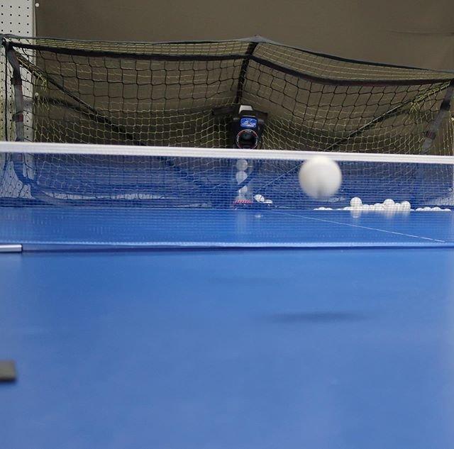 "kuu nomu asobu on Instagram: ""今日のミッション その2卓球マシンで練習。他の予約が入っていなくて快適でした。#卓球 #卓球マシン #卓球練習 #卓球初心者 #いい汗かいた"" (100352)"