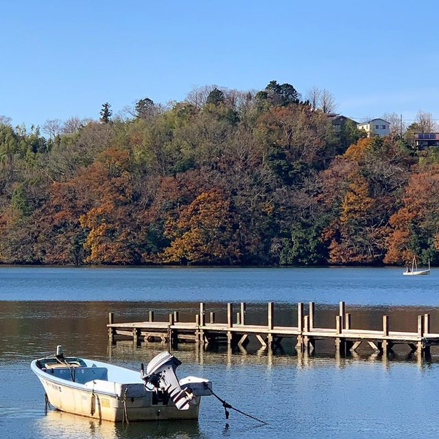 "kay on Instagram: ""一碧湖。もっと早い時期なら紅葉が綺麗だったかなぁ。#一碧湖 #伊豆高原#静岡旅行#伊豆の観光スポット #紅葉には遅すぎた"" (117843)"