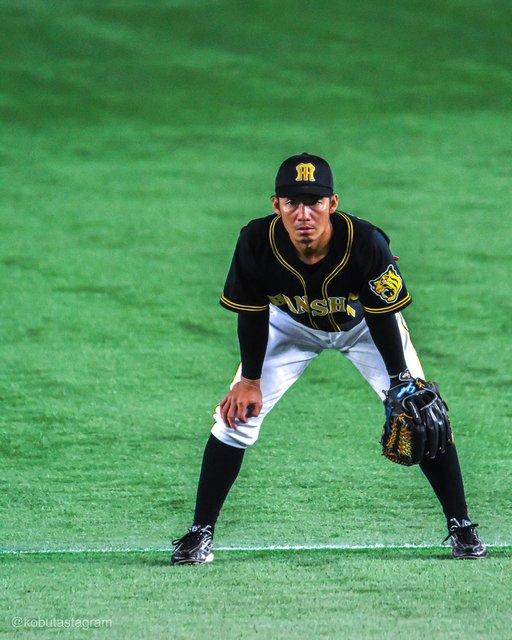 "Takatada Furukawa on Instagram: "".ロッテでも活躍を#鳥谷敬#chibalotte#hanshintigers#D500#TAMRON150600#Lightroomcc#待ってるぞプロ野球#今こそ写真の力を#今こそ野球の力を"" (120347)"