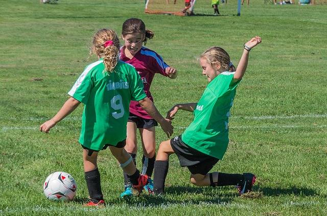 Free photo: Soccer, Summer, Sport - Free Image on Pixabay - 2093960 (2415)
