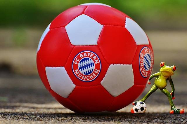 Free photo: Bayern Munich, Frog, Football Club - Free Image on Pixabay - 1349927 (4335)