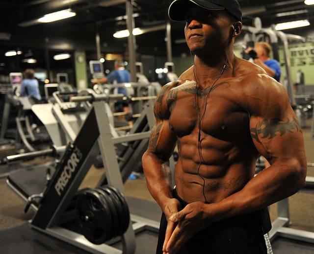 Free photo: Bodybuilder, Weight, Training - Free Image on Pixabay - 646506 (5362)