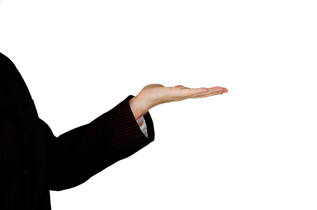 Free photo: Hand, The Hand, Gesture, Stick - Free Image on Pixabay - 427521 (5752)