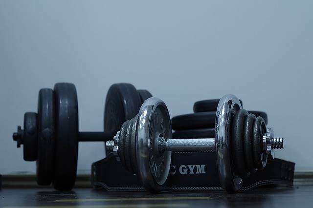 Free photo: Sport, Exercise, Gym, Dumbbell - Free Image on Pixabay - 1244925 (6309)
