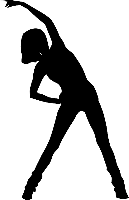 Free vector graphic: Woman, Sports, Aerobics, Fitness - Free Image on Pixabay - 156892 (8509)
