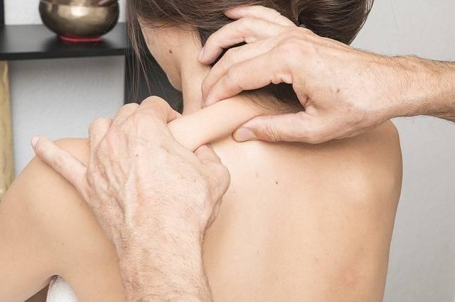 Free photo: Connective Tissue, Massage - Free Image on Pixabay - 2441725 (8568)