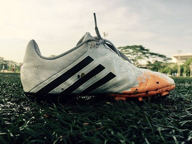 Free photo: Soccer, Shoe, Shoes, Boot, Football - Free Image on Pixabay - 2394121 (12310)