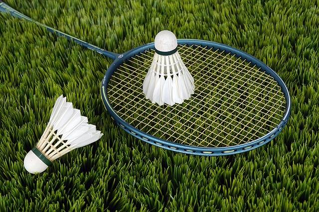 Free photo: Badminton, Shuttle, Sport, Bat - Free Image on Pixabay - 1428046 (13468)