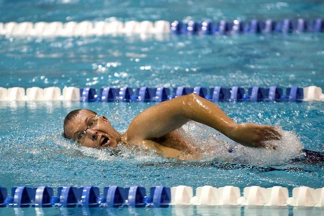 Free photo: Swimmer, Training, Lane - Free Image on Pixabay - 659906 (16066)