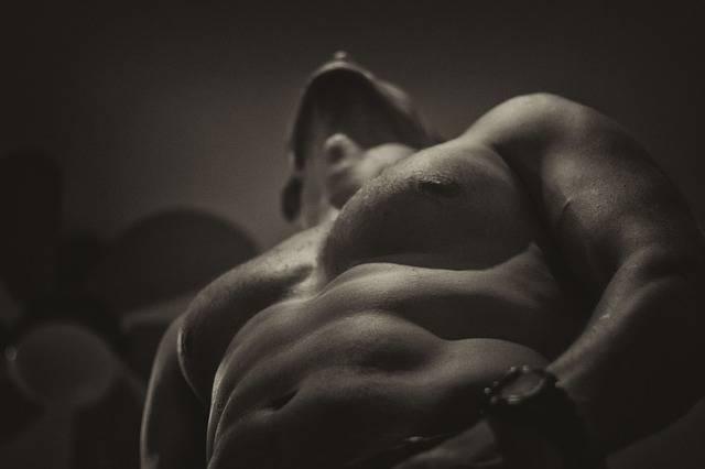 Free photo: Naked, Upper Body, Fit, Lifestyle - Free Image on Pixabay - 1847866 (17005)