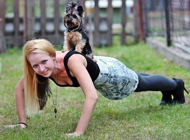 Free photo: Blonde Woman, Yorkie, Dog, Workout - Free Image on Pixabay - 2039604 (18070)