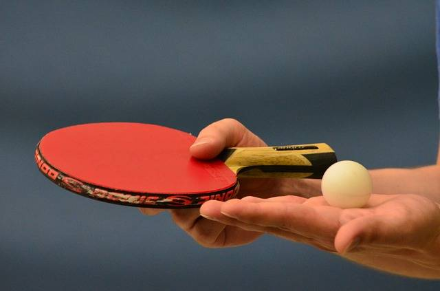Free photo: Table Tennis, Ping-Pong - Free Image on Pixabay - 407489 (18592)