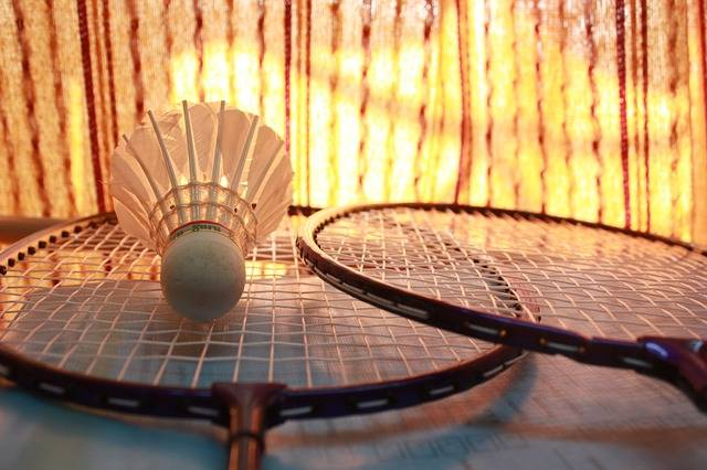 Free photo: Badminton, Shuttlecock, Games - Free Image on Pixabay - 166415 (19938)