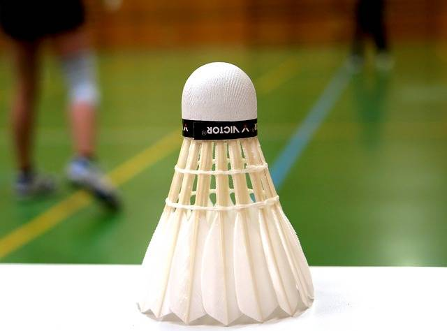 Free photo: Badminton, Ball, Sport, Leisure - Free Image on Pixabay - 783601 (23115)