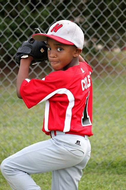 Free photo: Boy, Player, Baseball, Pitcher - Free Image on Pixabay - 432680 (23536)