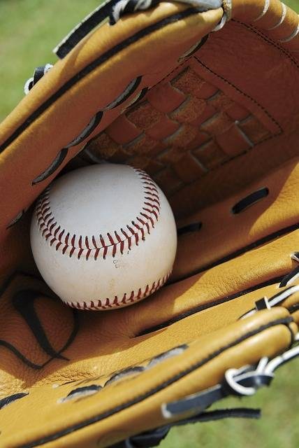 Free photo: Baseball, Glove, Sport, Equipment - Free Image on Pixabay - 956719 (23538)