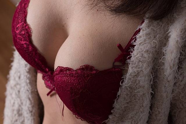 Bra Breasts Boobs · Free photo on Pixabay (36667)