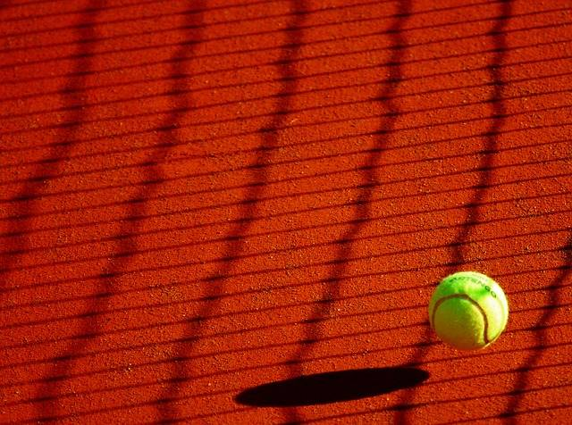 Tennis Ball Sport · Free photo on Pixabay (48556)