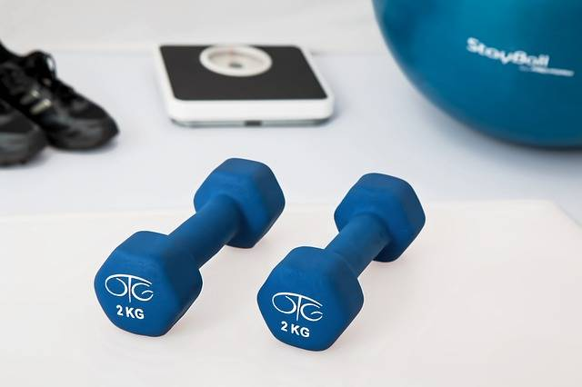 Physiotherapy Weight Training · Free photo on Pixabay (55628)