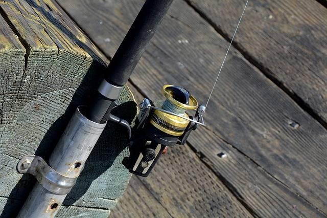 Fishing Reel Fish · Free photo on Pixabay (64576)