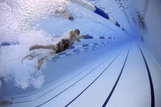 Swimmers Swimming Race · Free photo on Pixabay (68167)