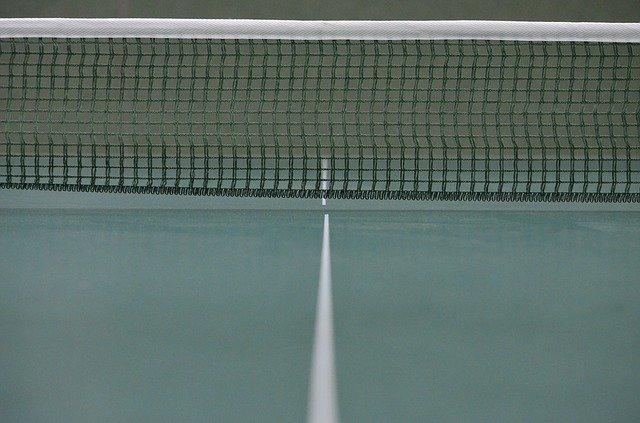 Table Tennis Ping-Pong Web - Free photo on Pixabay (96645)