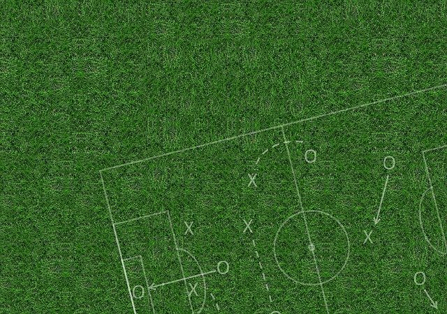 Rush Football Grass - Free image on Pixabay (96837)
