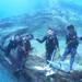 MSO那覇店のダイビングは水面ツルツルのケラマでダイビング!