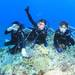 MSO那覇店のダイビングはケラマで体験ダイビング!