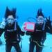 MSO那覇店のダイビングはケラマで3チームに別れてダイビング!
