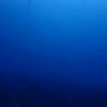 落ち着いて青い海に