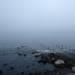 穏やかな海況と霧