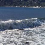 海に影響を与えているものって?