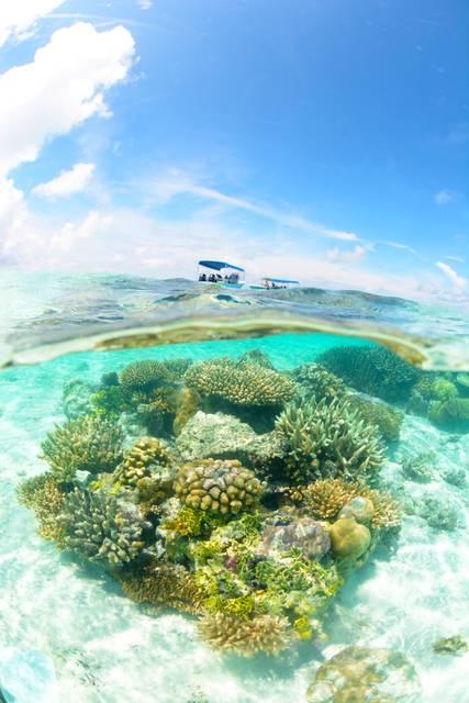 サンゴと空とボート