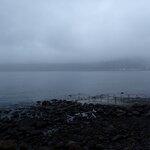 昨日に引き続き、とても穏やかな海況です