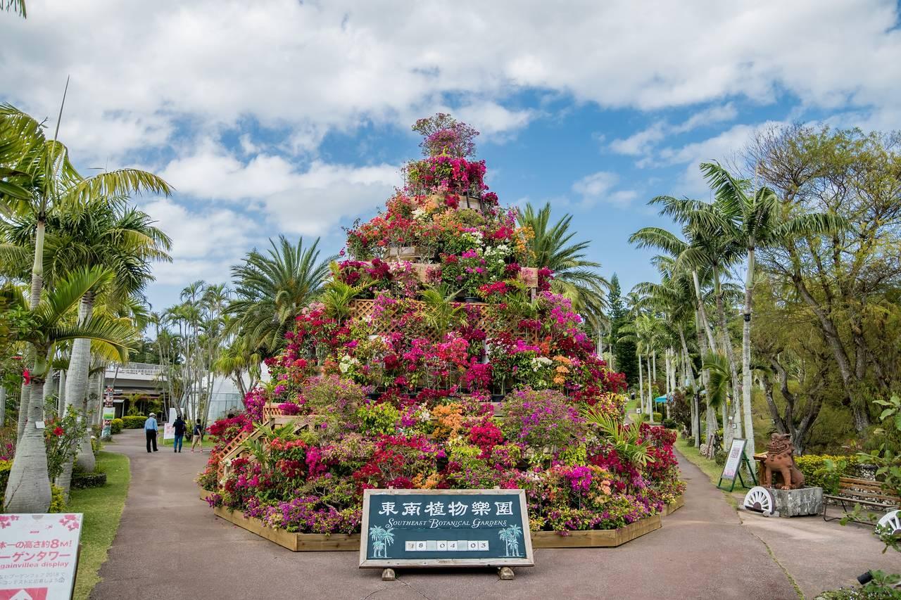 ©東南植物楽園