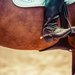 富裕層の趣味「乗馬」はどう始めればいい?ビジネススキル向上も期待