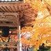 秋旅は京都&小京都で紅葉狩り!一度は行きたい観光スポット5選