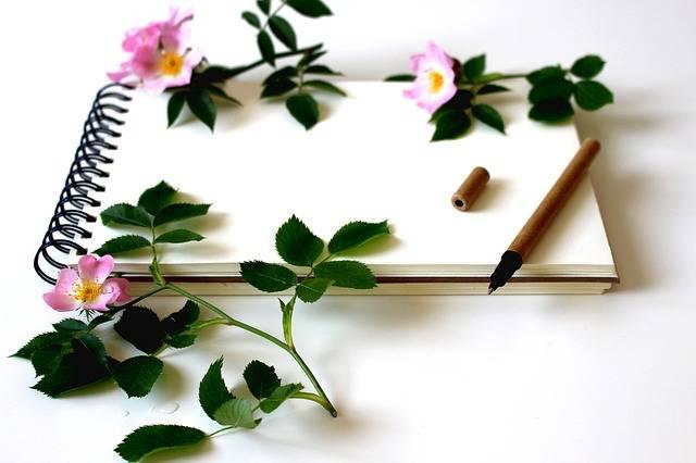 Notebook Write Notes Writing · Free photo on Pixabay (22689)