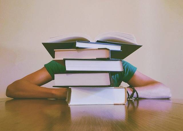 Books Student Studying · Free photo on Pixabay (26773)