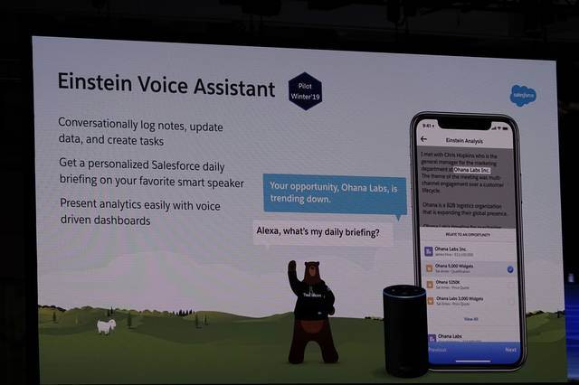 Einstein Voice Assistant