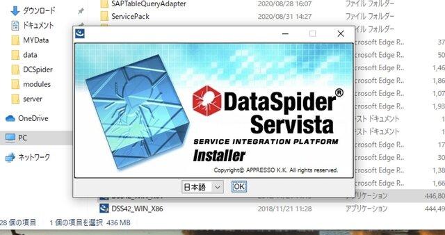 DataSpider Servistaのインストール画面
