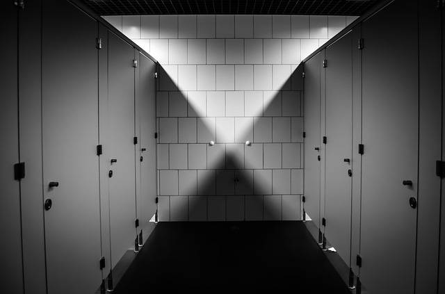 Wc Toilet Purely Public · Free photo on Pixabay (9186)