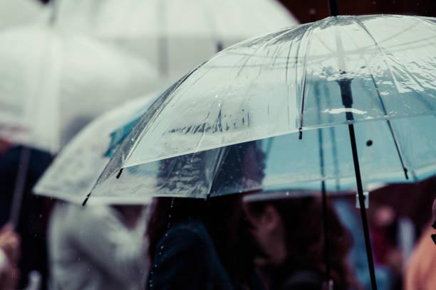 一年でいちばん苦手な「梅雨シーズン」がいよいよ到来( ...